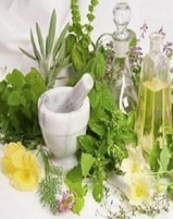 Online Master Herbalist Training Course Certification